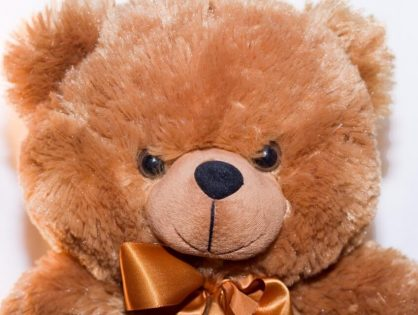 Saving Stuffed Toys From A Bed Bug Curse